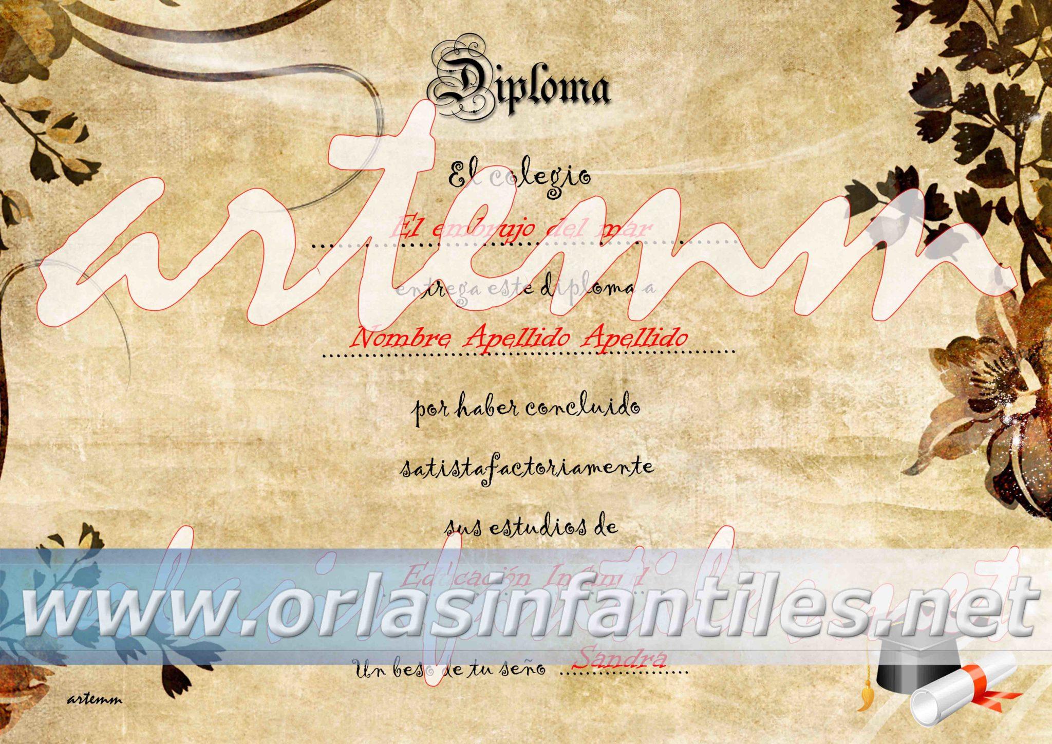 diploma 024